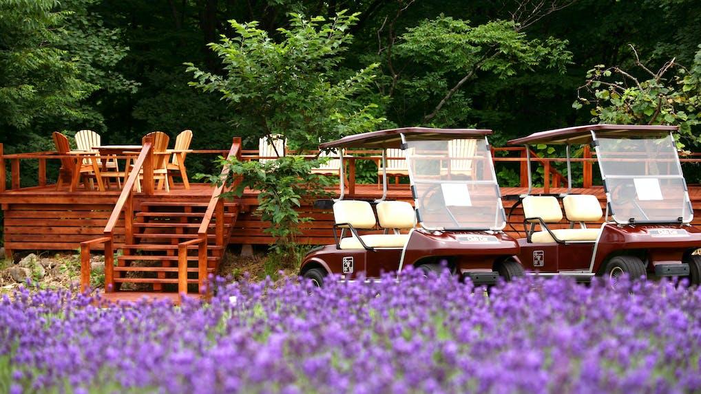 夏の北海道へ!絶景と美食が堪能できるおすすめ宿 6選