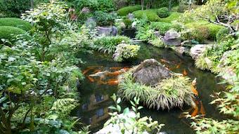 日本最古の温泉地を代表する大人の料亭旅館