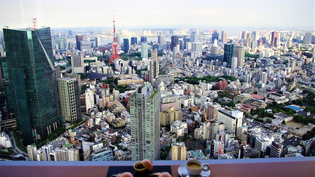 東京タワーにスカイツリー!東京のランドマークを一望