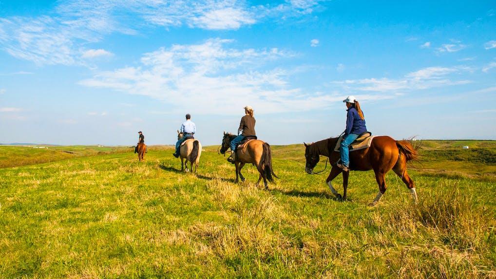 豊かな自然の中で乗馬体験ができる宿 5選