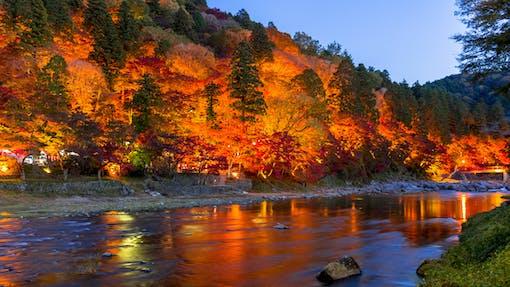 秋だけの絶景に出会う旅