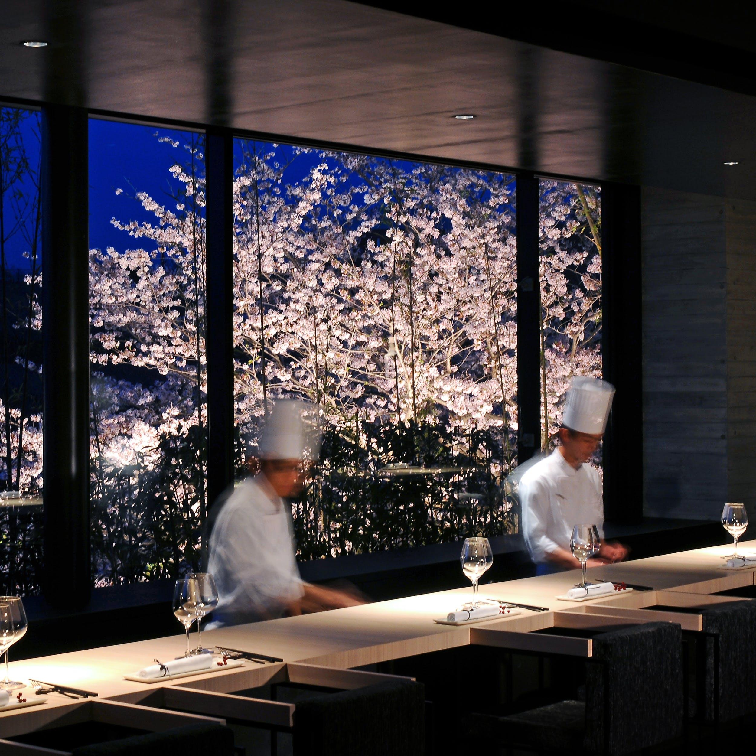こだわりの美食を桜とともに
