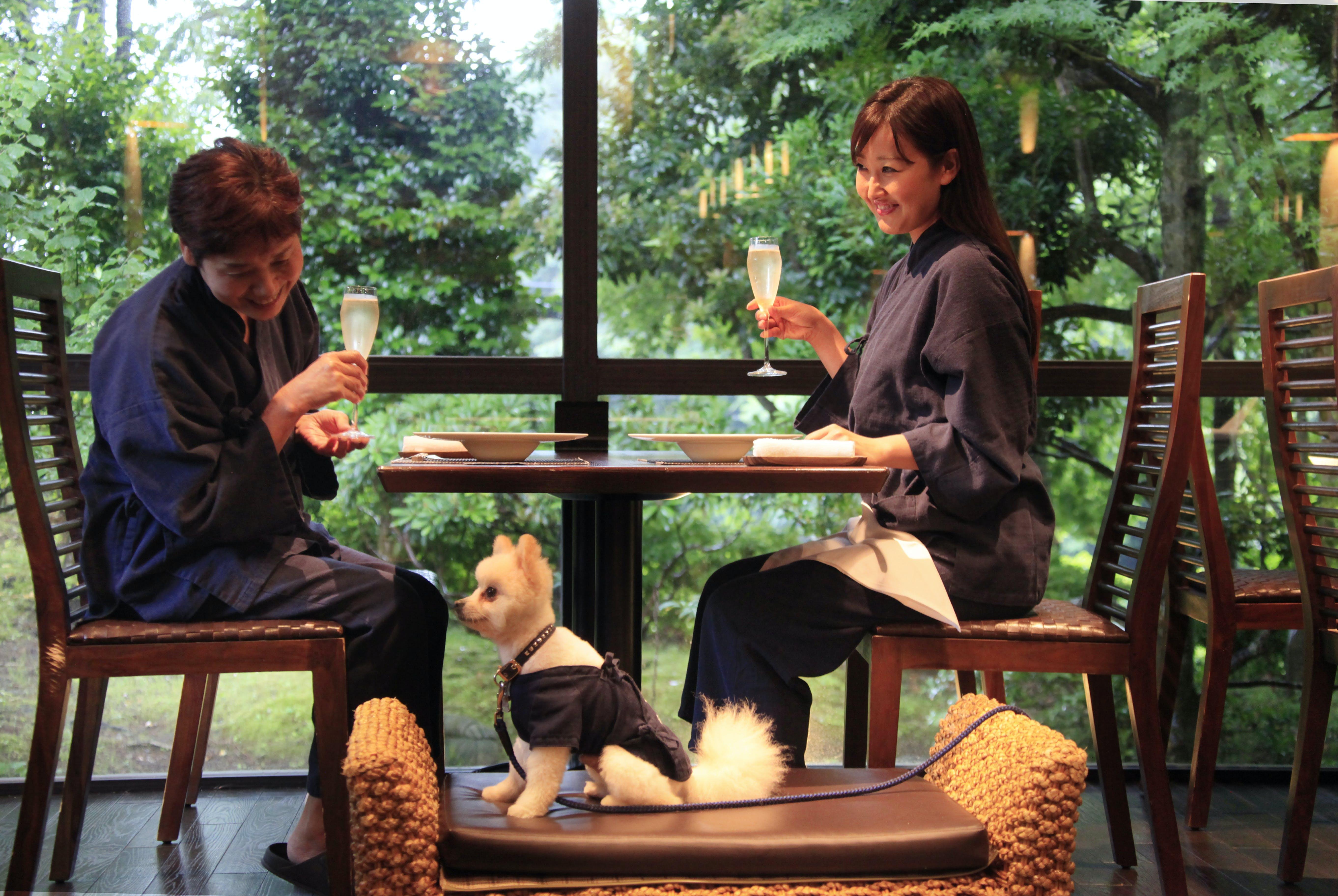ペットと一緒に泊まれる東京から2時間の宿