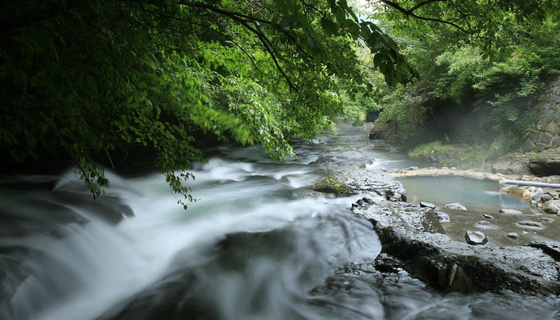 五感で癒される渓流沿いの露天風呂 6選