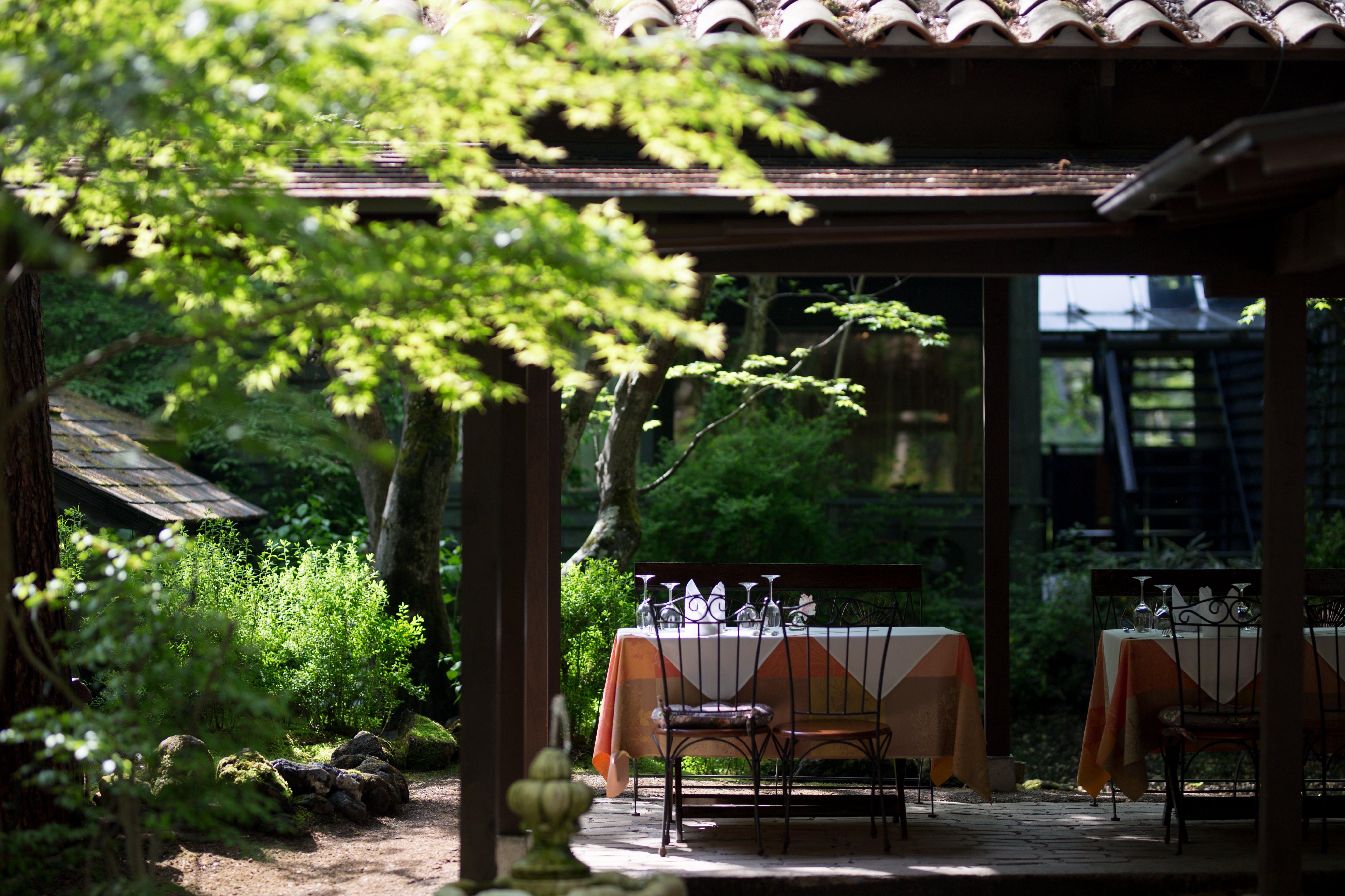 軽井沢の森で7000本のワインと美食にときめく