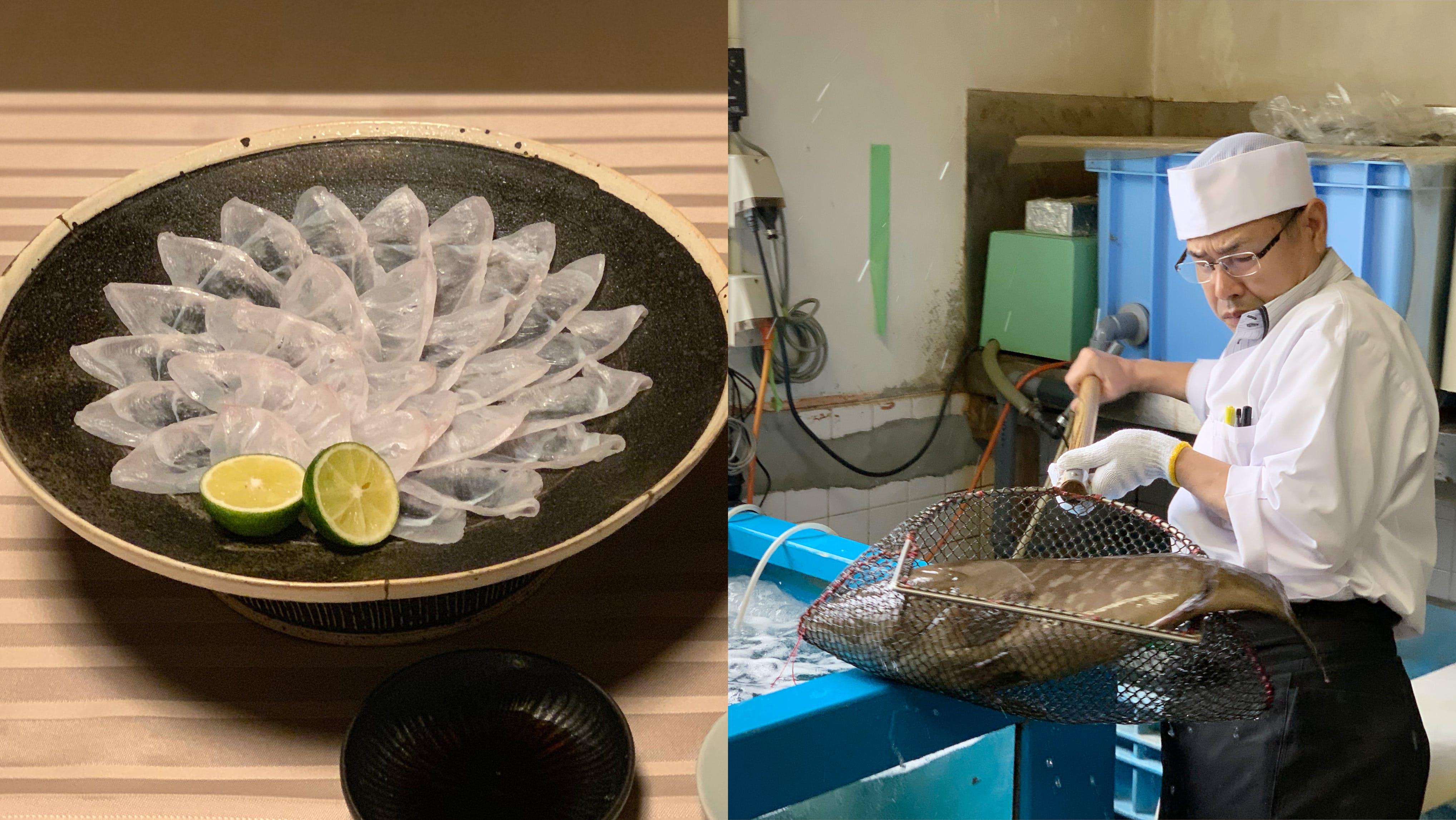 【極みの美食宿】洋々閣×佐賀県唐津産のクエ