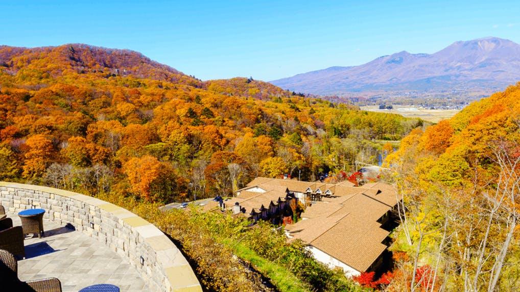 【箱根・軽井沢・那須】東京から2時間の紅葉が楽しめるおすすめ宿7選