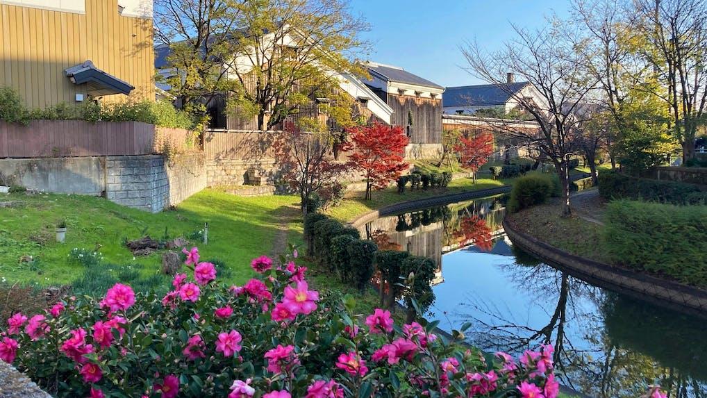 京都観光のプロに聞いた!とっておきの京都 穴場観光スポット 冬編
