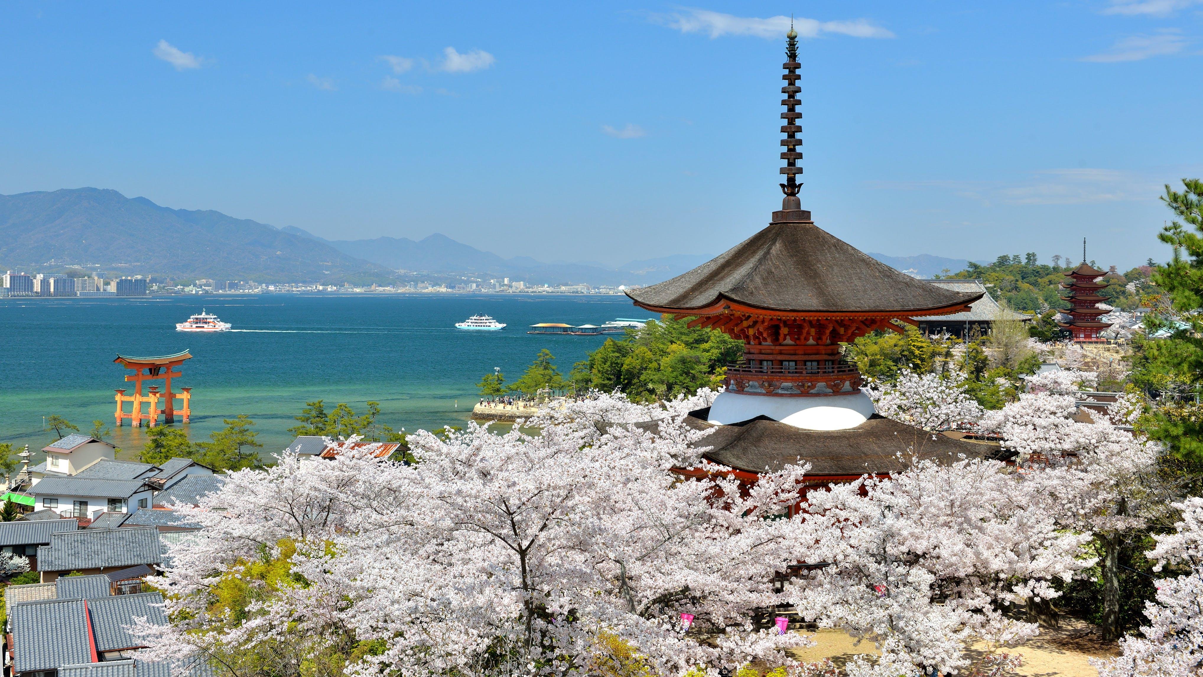桜と世界遺産を巡る春旅へ!厳島神社の近くにある宿5選