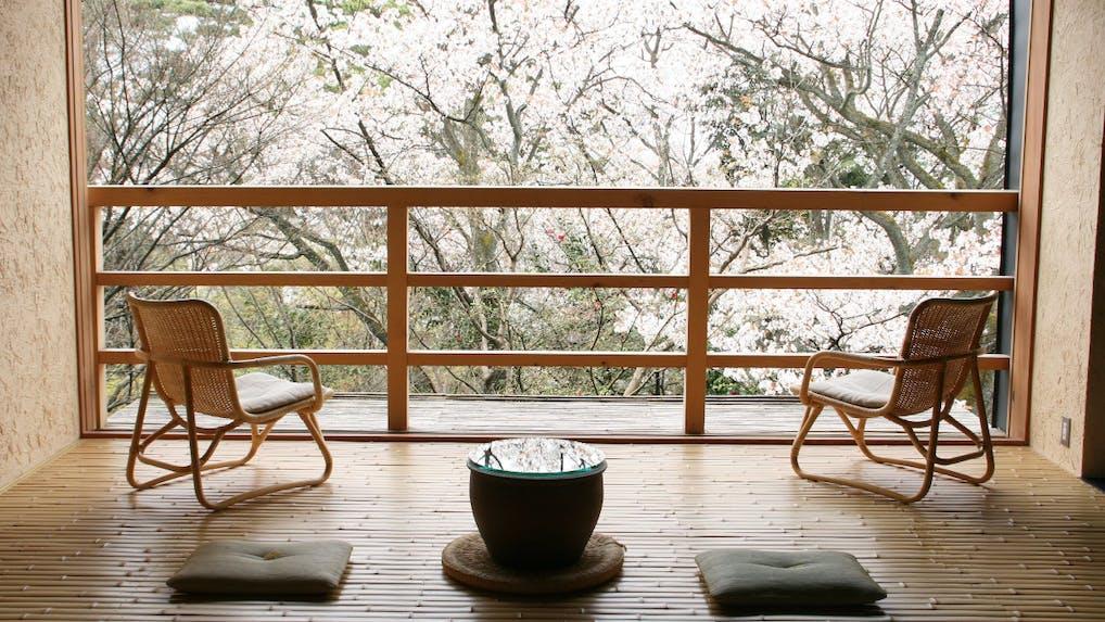 満開の桜を独り占め!お部屋から桜が見える宿 西日本編